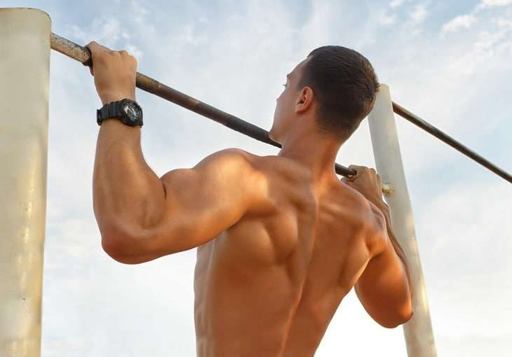 What Muscles Do Pull Ups Work